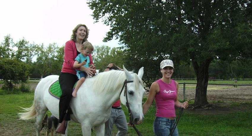 Volunteer work project equine therapy