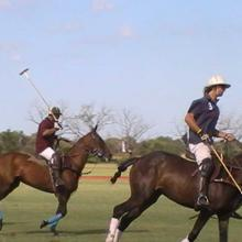 Polo Match in Argentinien